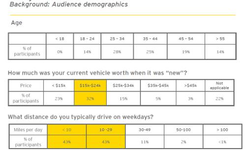 Ernst & Young Survey Audience Demographics